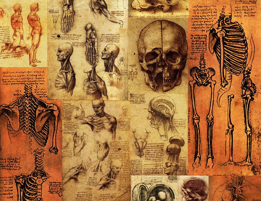 Da Vinci Wallpaper HD
