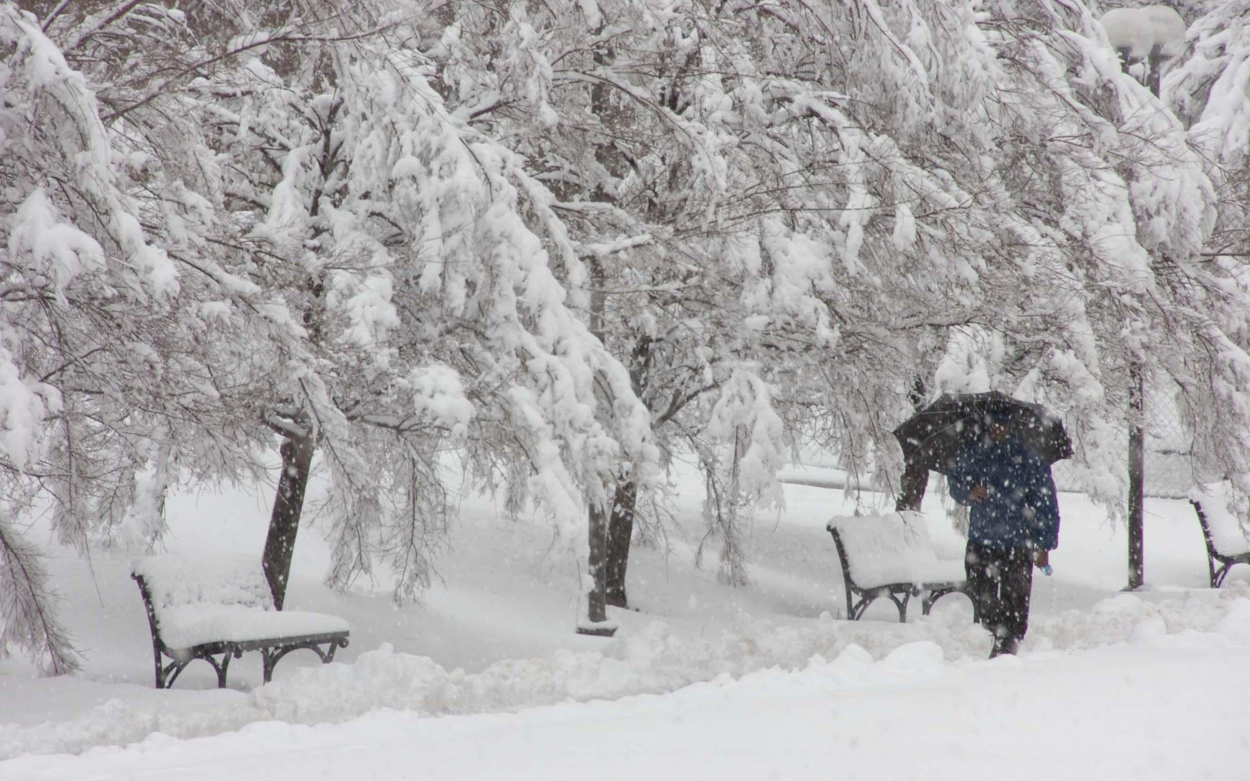 Snowy Winter Scenes Wallpaper Wallpapersafari