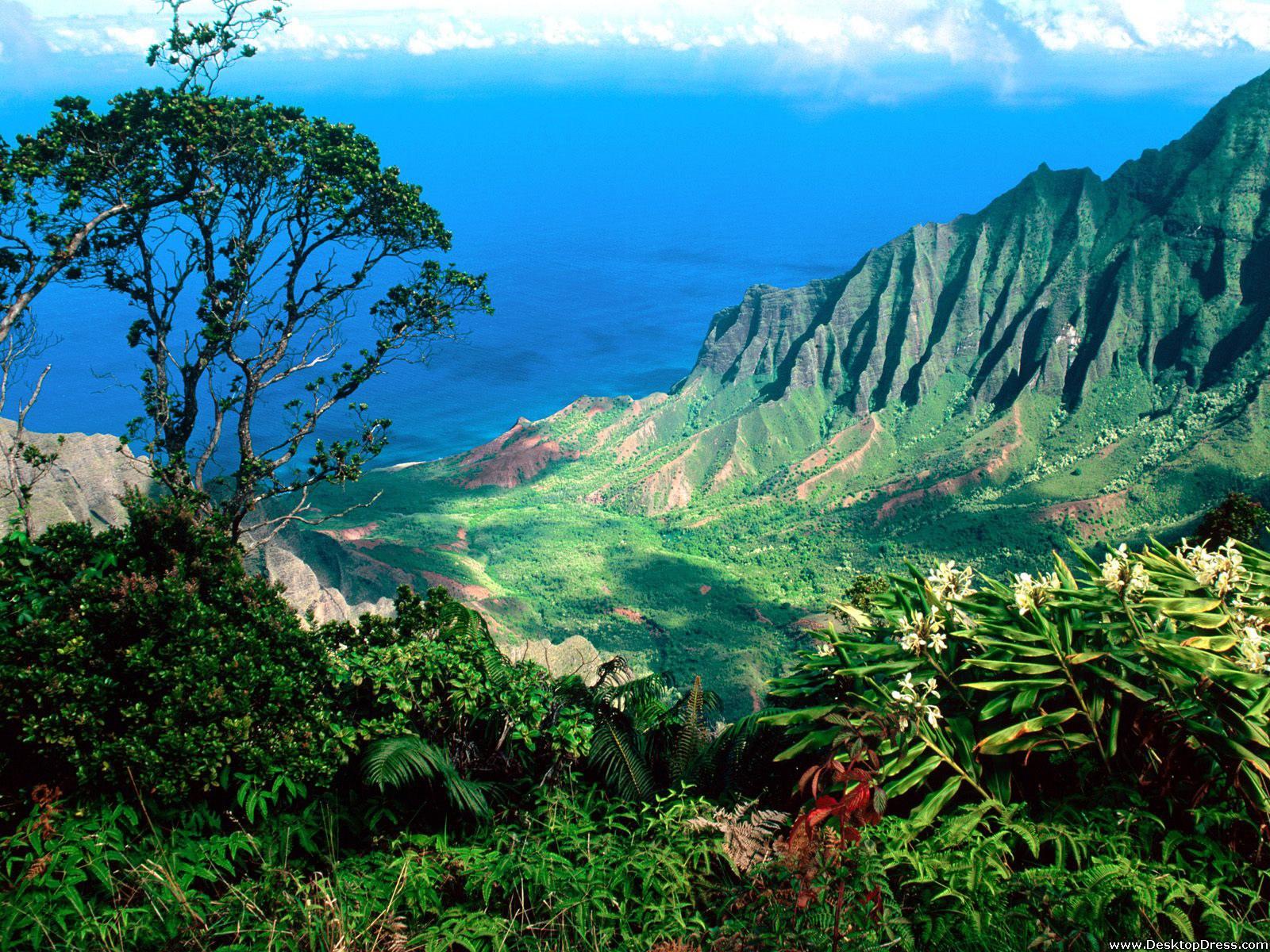 Desktop Wallpapers Natural Backgrounds Kalalau Valley Kauai 1600x1200