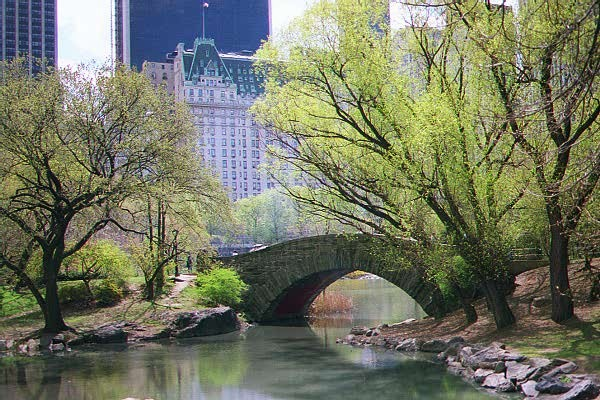New York NY Central Park in the Spring photo picture image New 600x400