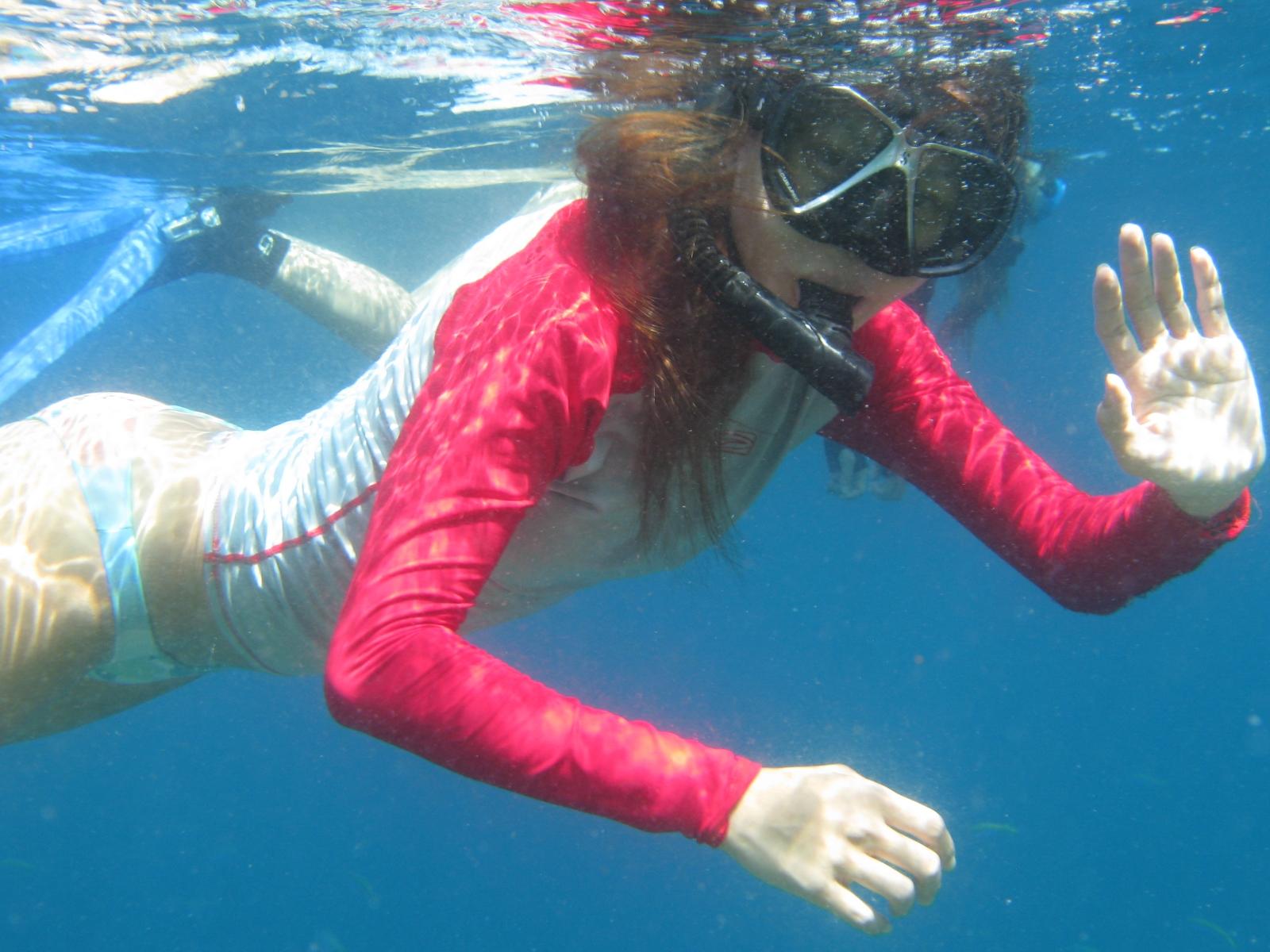 Snorkeling Wallpaper Wallpapersafari