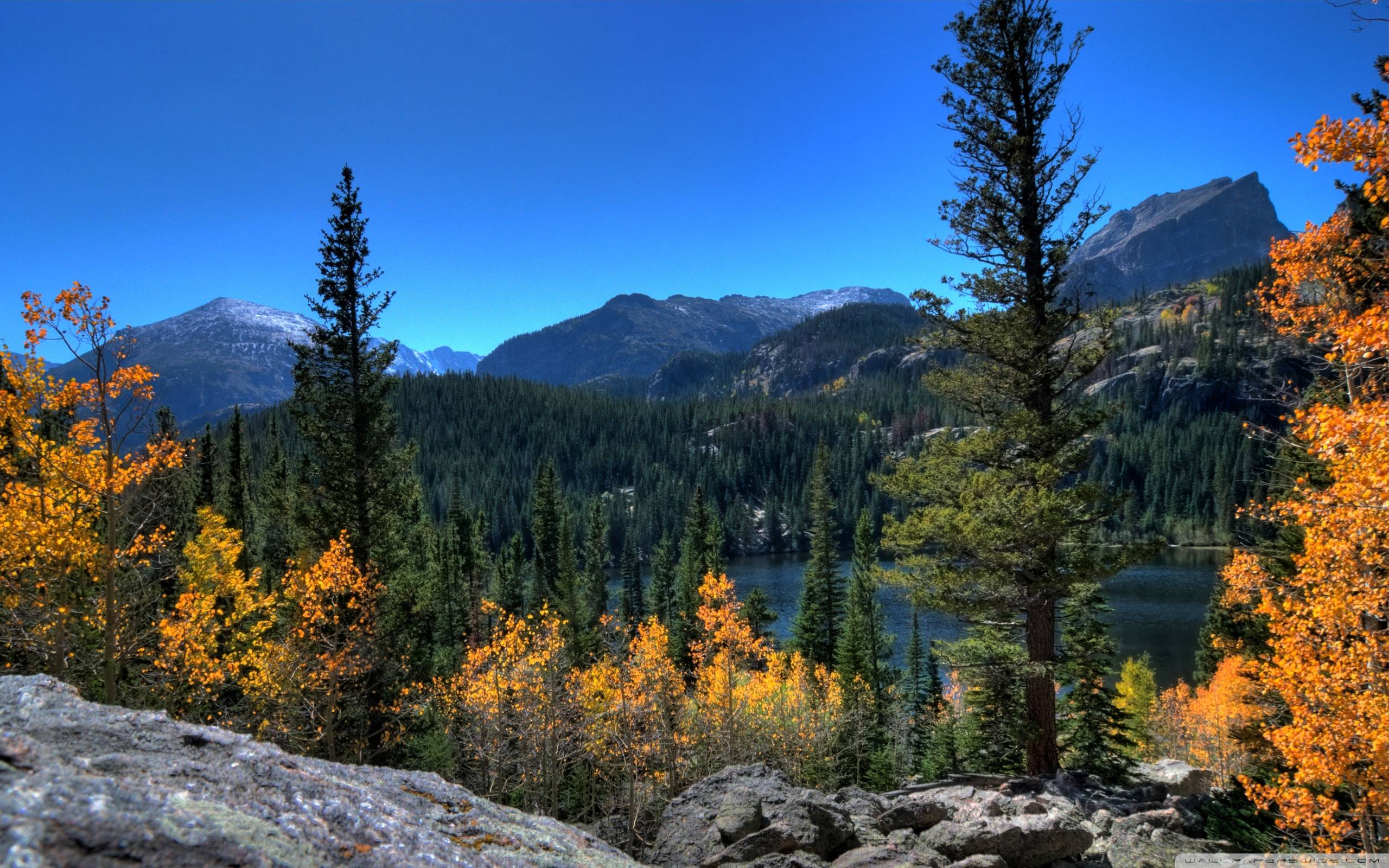 Rocky Mountain National Park Wallpapers 2560x1600