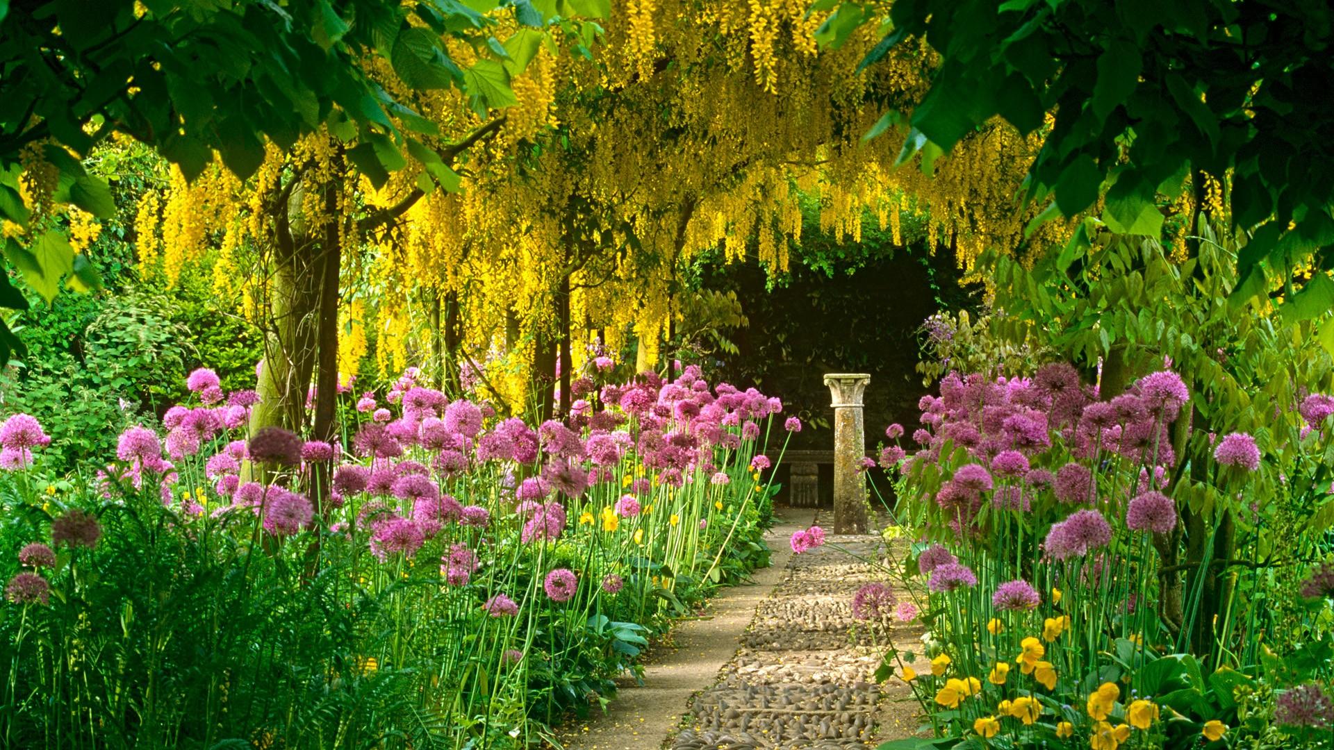 47 Free Flower Garden Desktop Wallpaper On Wallpapersafari