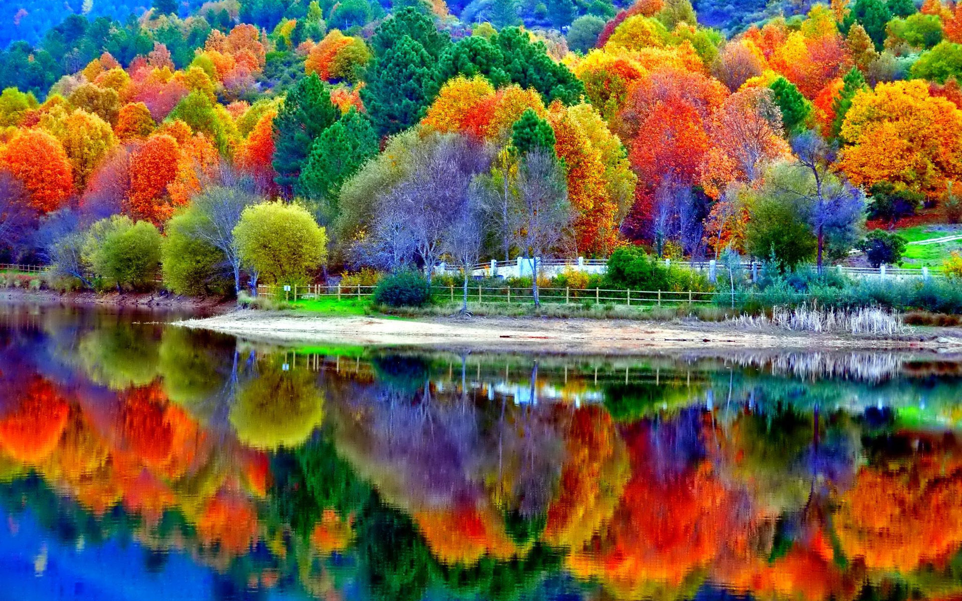 beautiful fall scenery wallpaper wallpapersafari