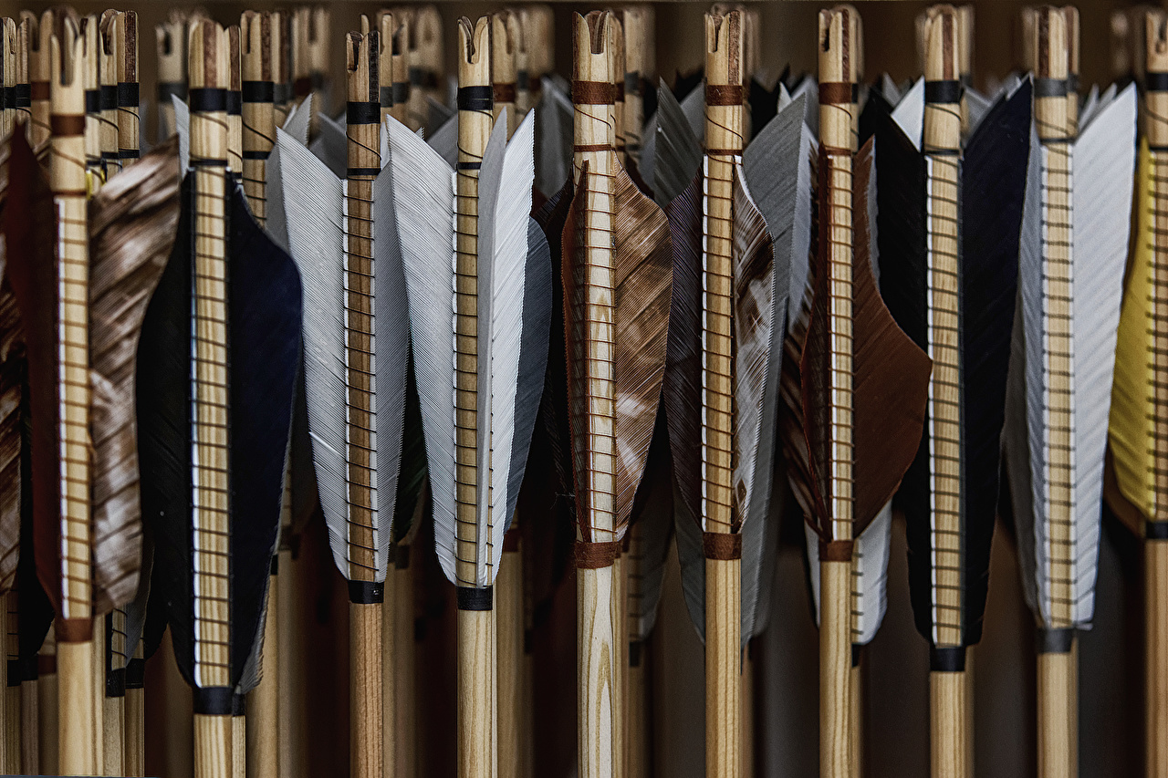 Images Wooden arrow Feathers Closeup 1280x853