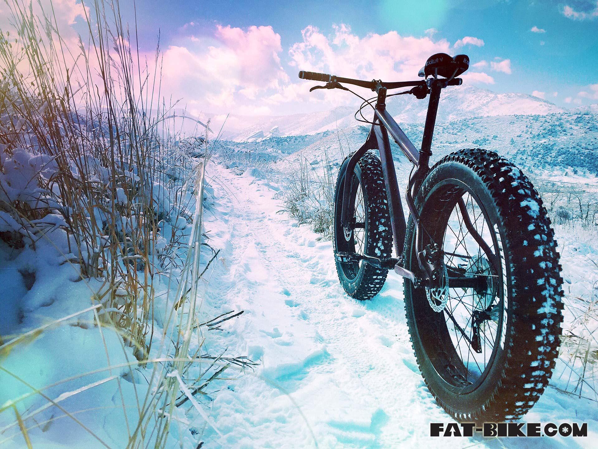 Wallpaper Wednesday Golden Colorado Fat bike FAT BIKECOM 1920x1440