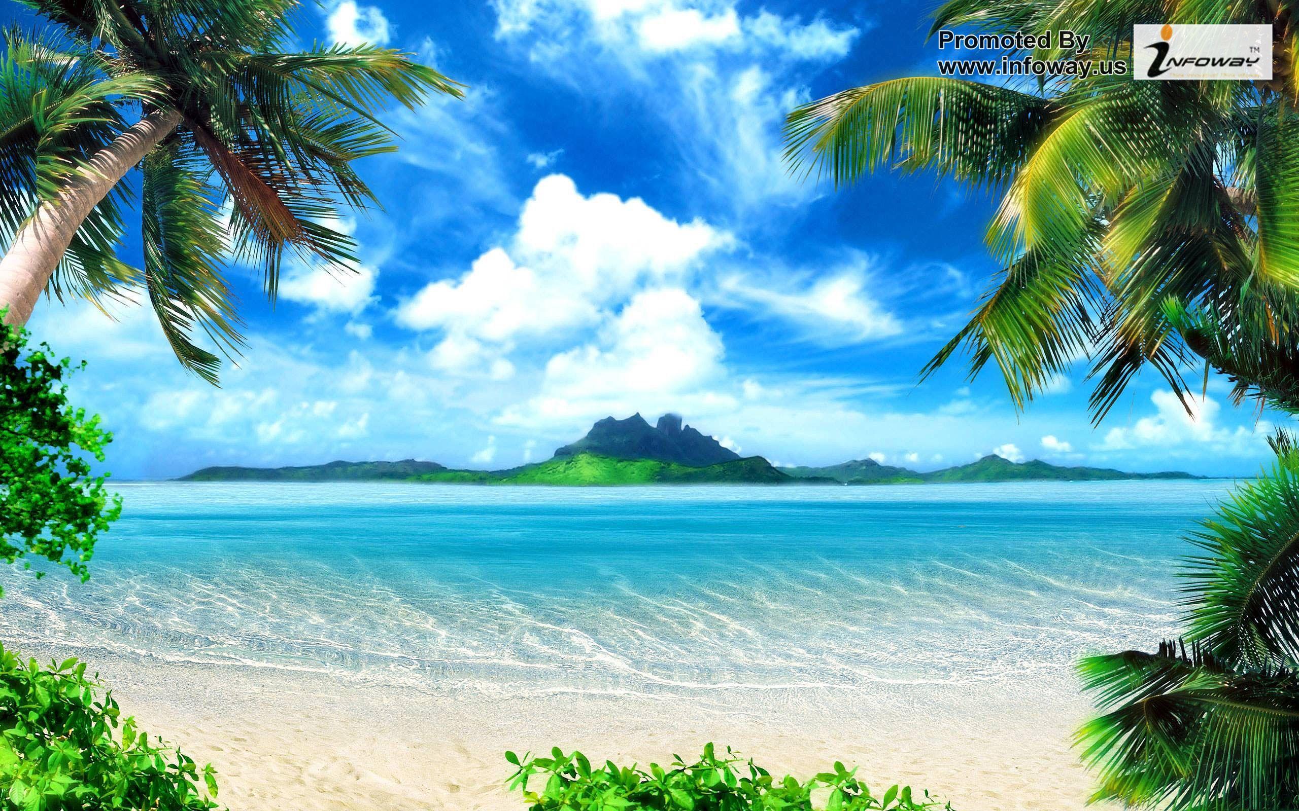 hd wallpapers tropical island wallpaper desert celebrity inspired 2560x1600