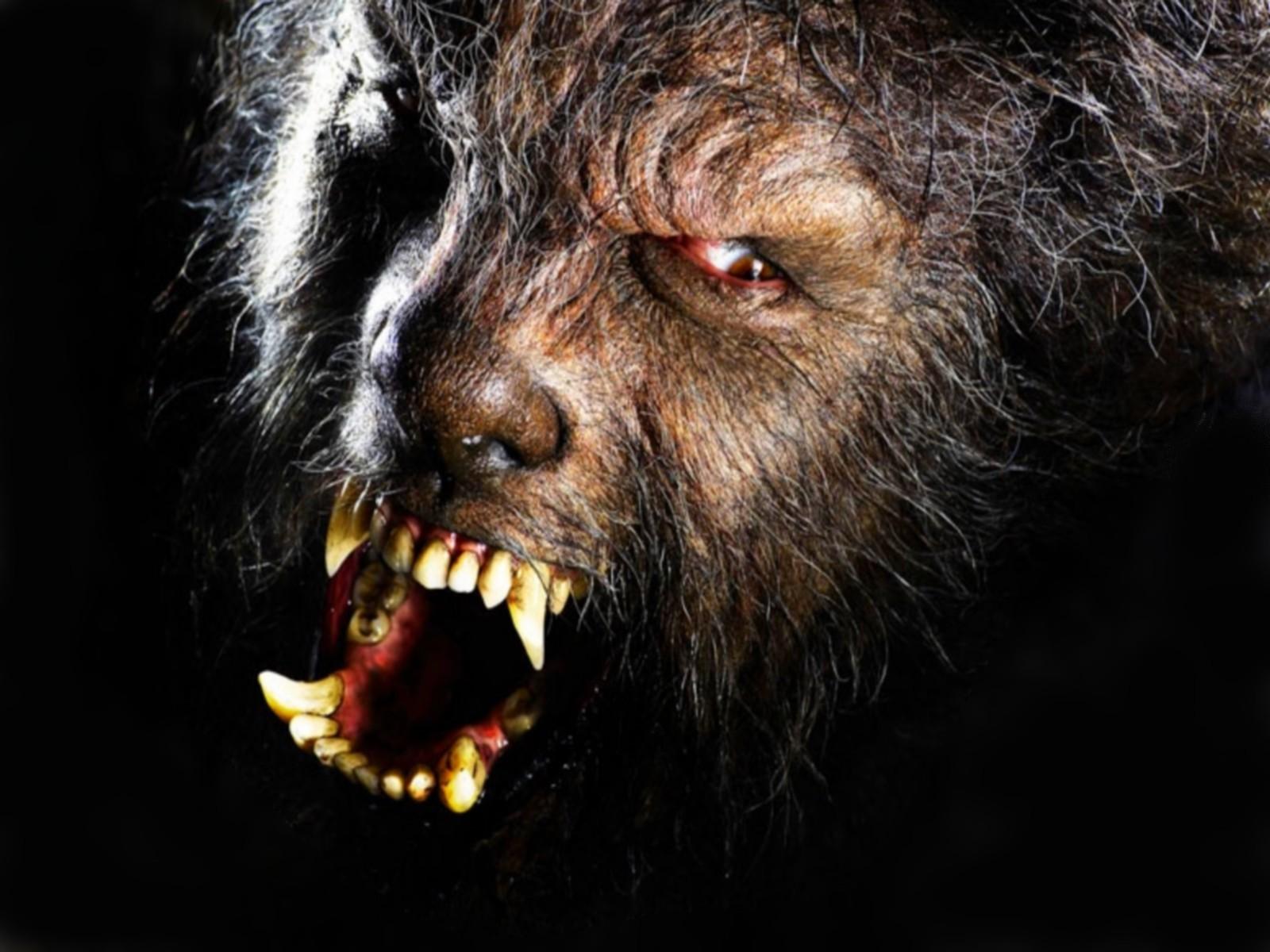 Dark Werewolf Wallpaper 1600x1200 Dark Werewolf 1600x1200