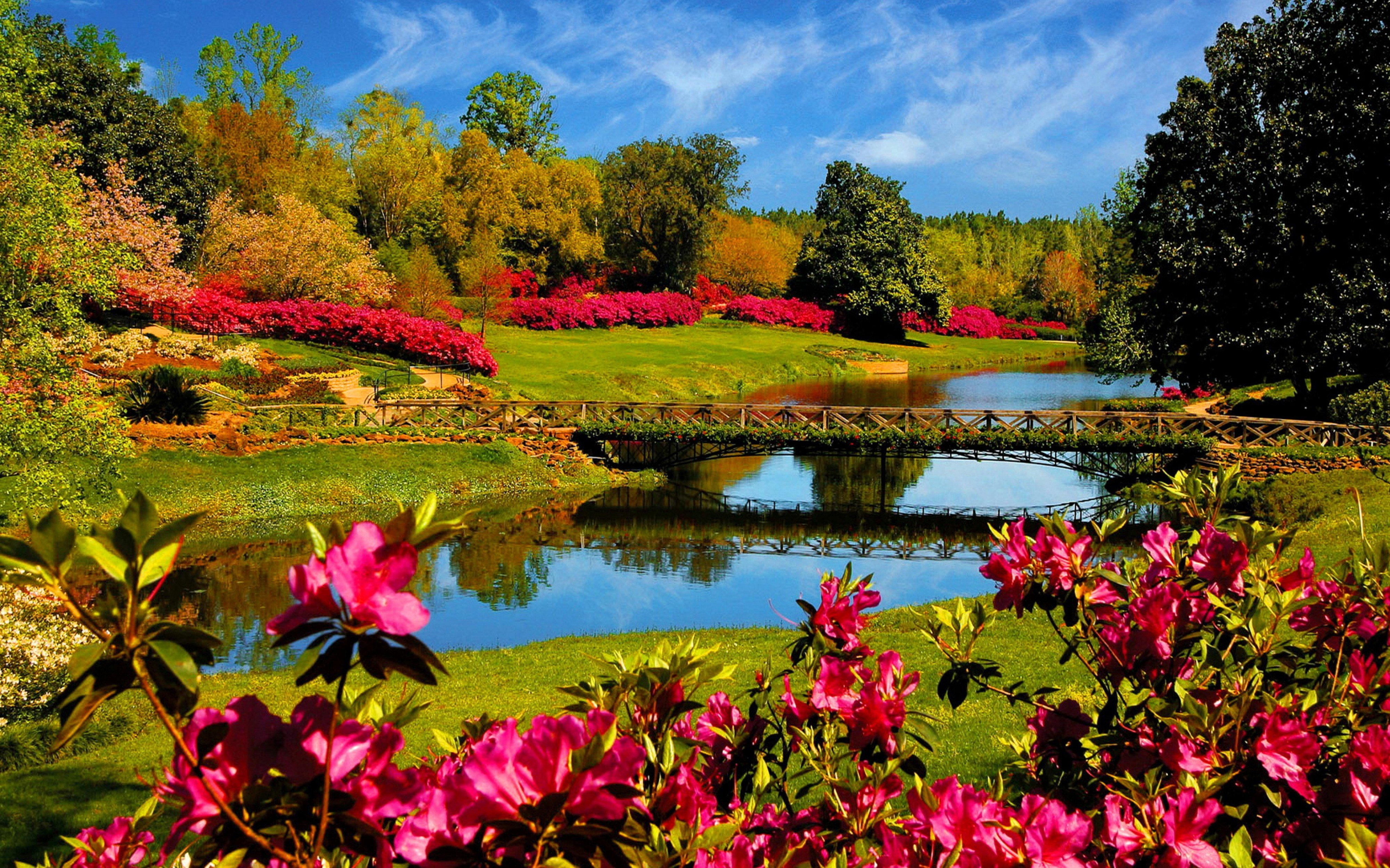 Flower lake landscape 4000x2500 wallpaper 4000x2500 344471 4000x2500