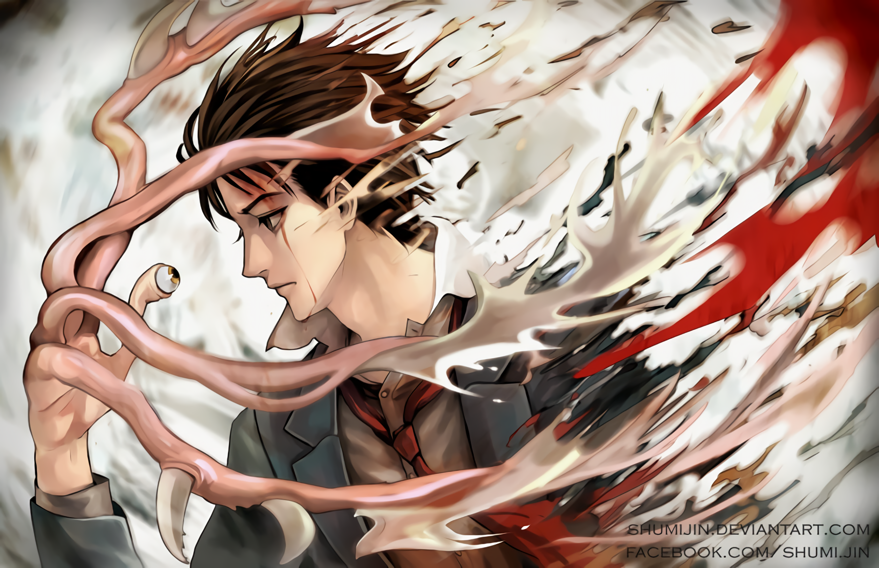 17 Parasyte  the Maxim  HD Wallpapers Background Images 1800x1164