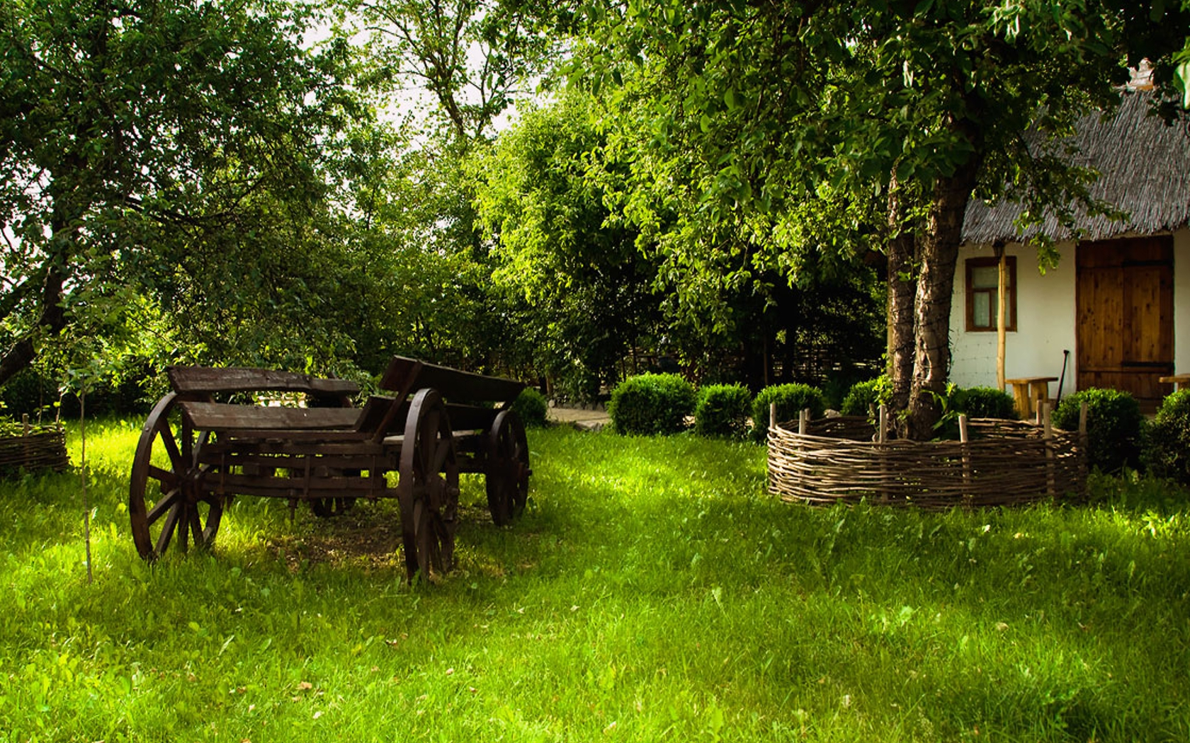 File Name 907583 Tree Computer Wallpapers Desktop Backgrounds 1 1680x1050