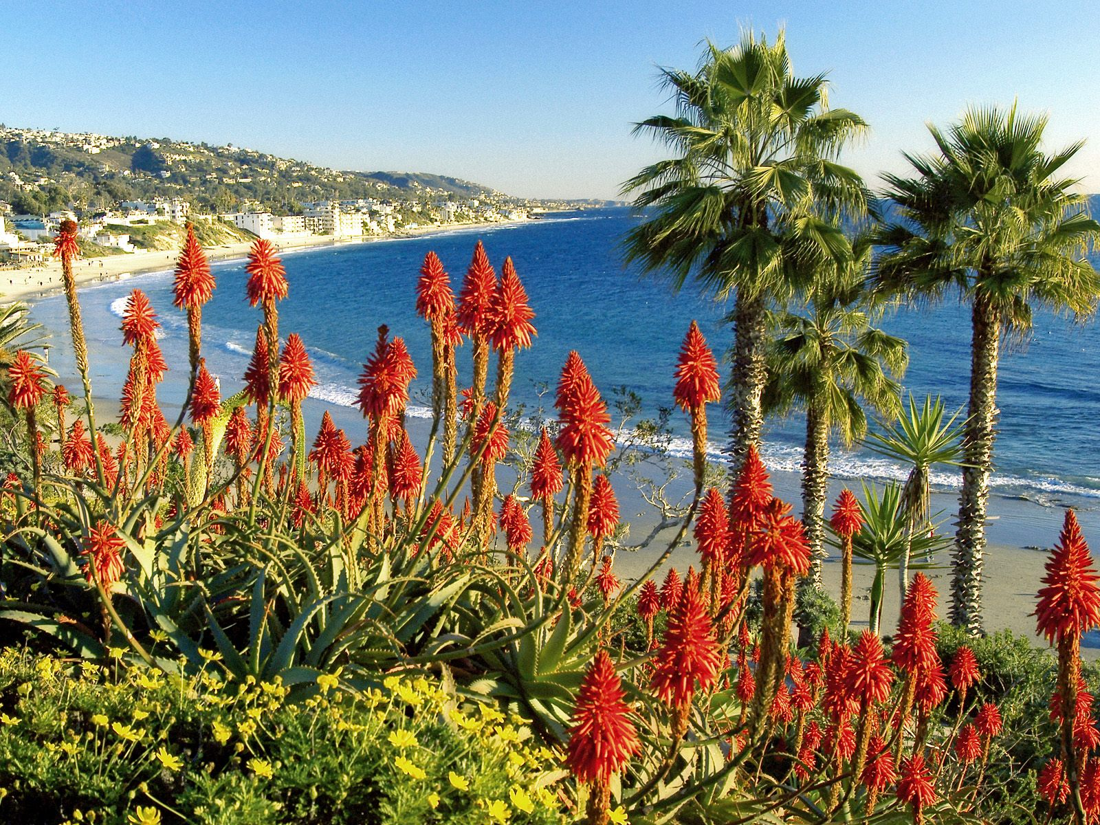 Laguna Beach California USA wallpapers and images 1600x1200
