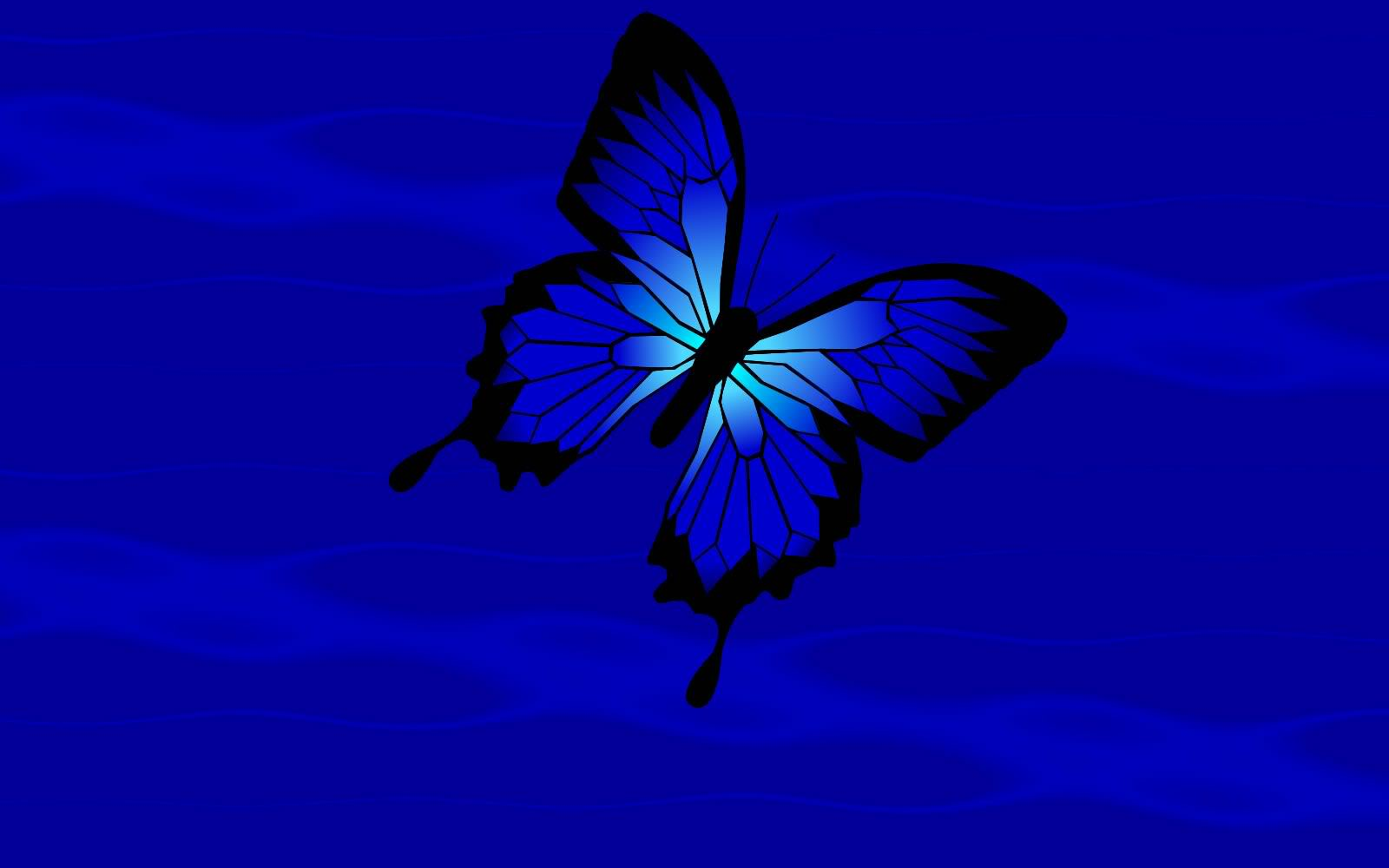 Blue Butterfly Wallpaper 9353 Hd Wallpapers in Cute   Imagescicom 1600x1000