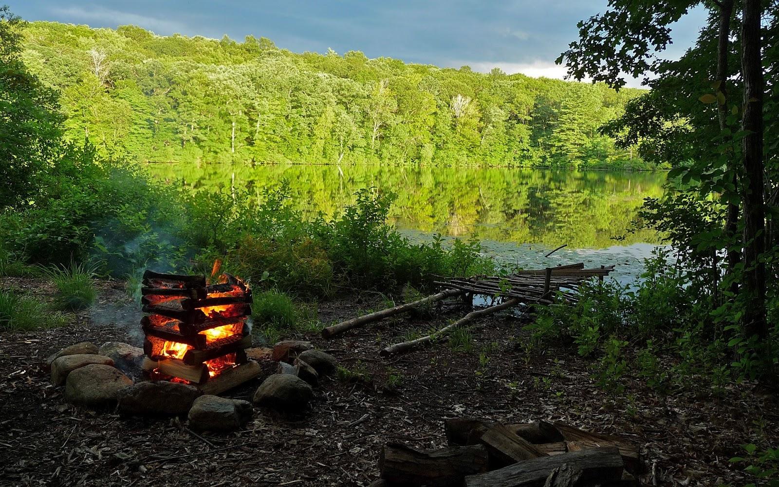 Free Camping Desktop Wallpaper - WallpaperSafari Camping Forest Wallpaper