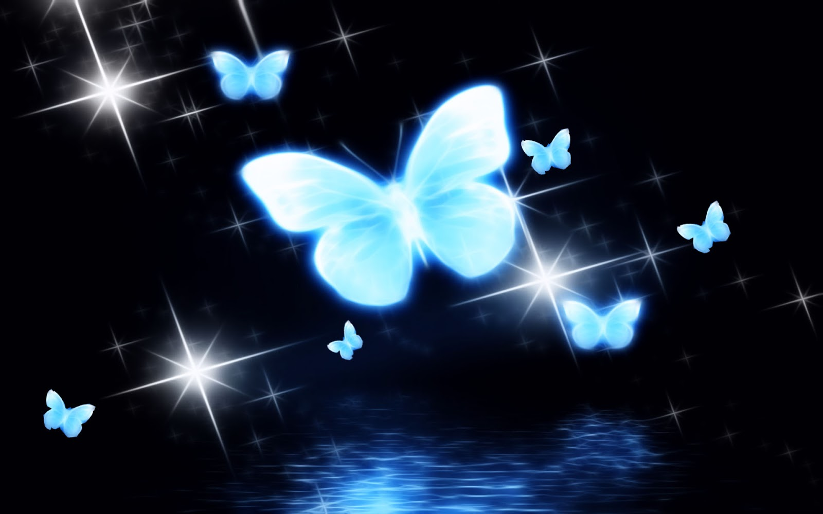 Download hd wallpapers of butterfly 2015 Photos butterflyhigh 1600x1000