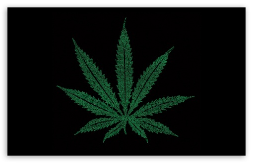 Marijuana Leaf Typography HD wallpaper for Standard 43 54 Fullscreen 510x330