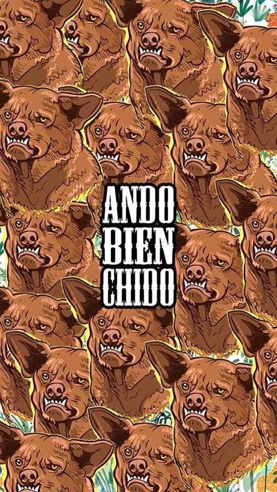 ANDO BIEN CHIDO   Wallpapers para sus celulares amigos Facebook 540x960