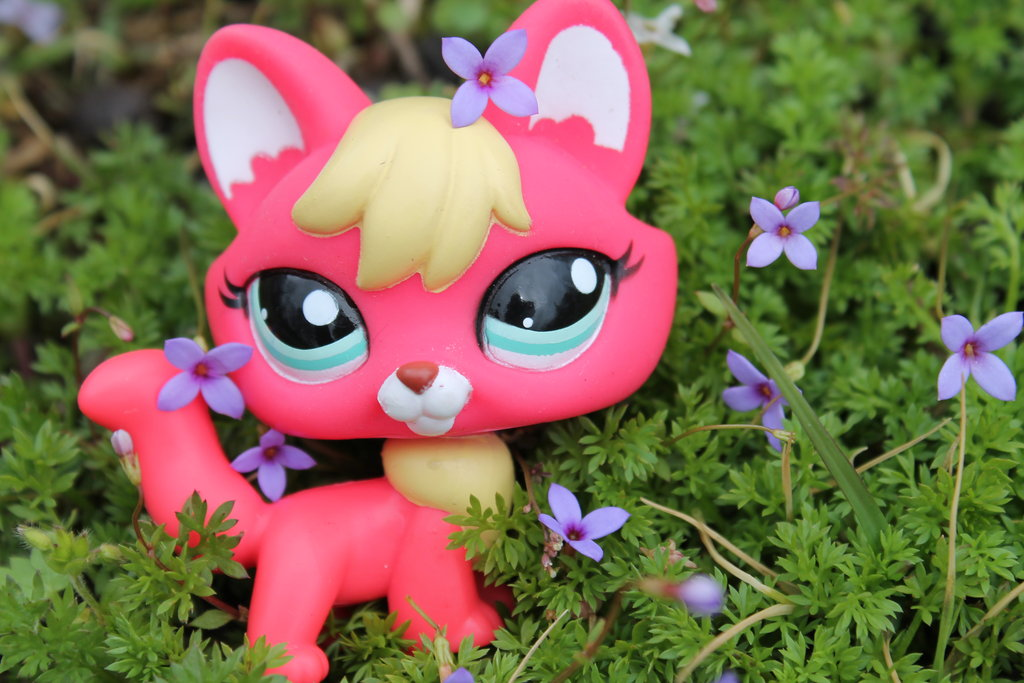 lps fox ouside in the flowers by SophieaGTV 1024x683