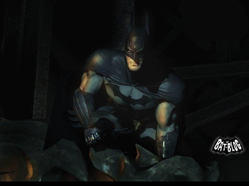 Arkham Asylum Videogame   Batman Wallpaper 5889580 1024x768
