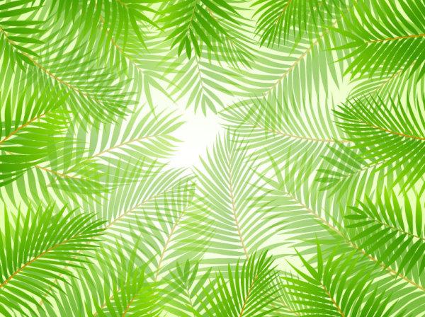 leaf elements vector background 01 download name tropical green leaf 600x448