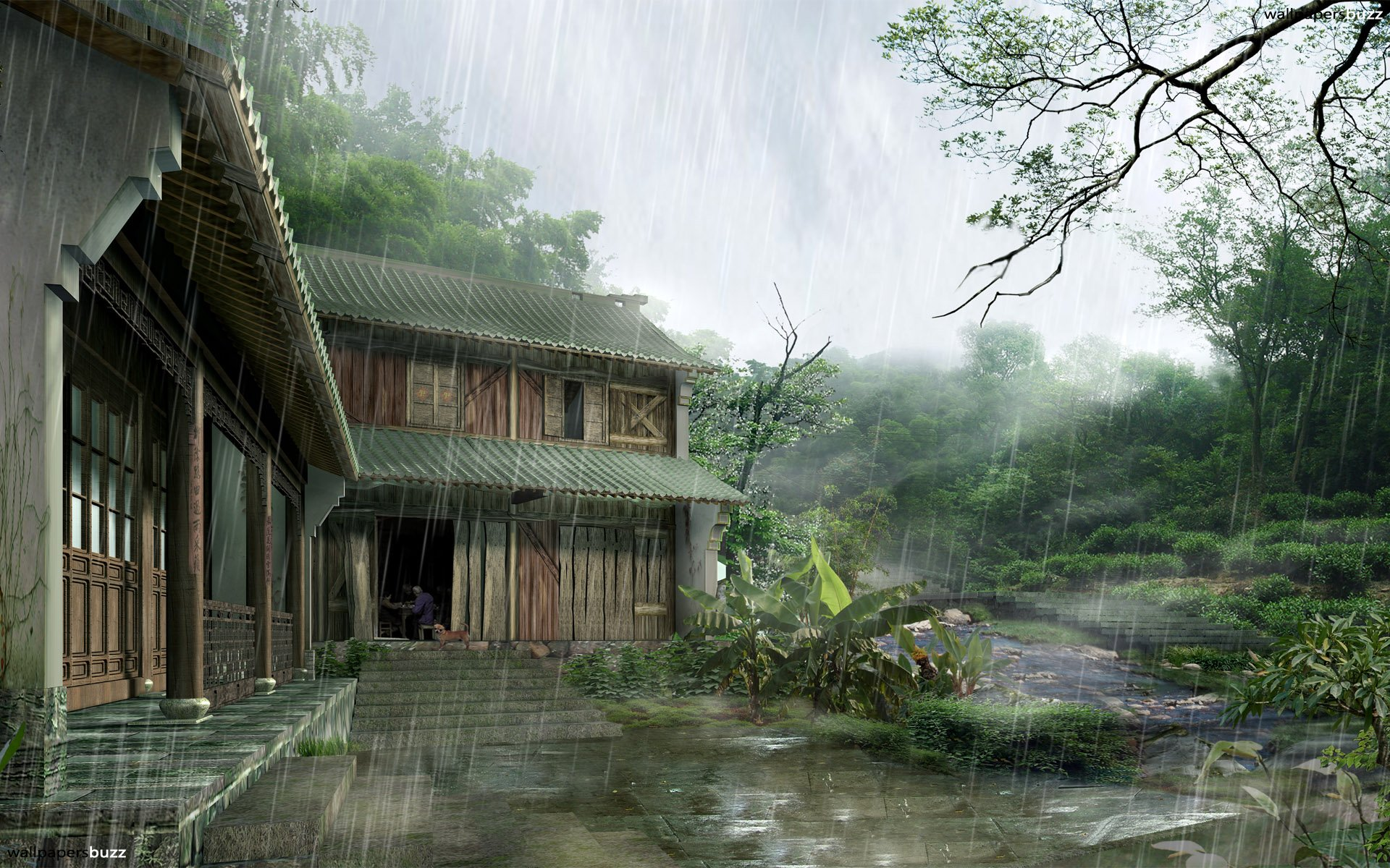 Rain Wallpapers Desktop HD Wallpapers Pictures Images 1920x1200