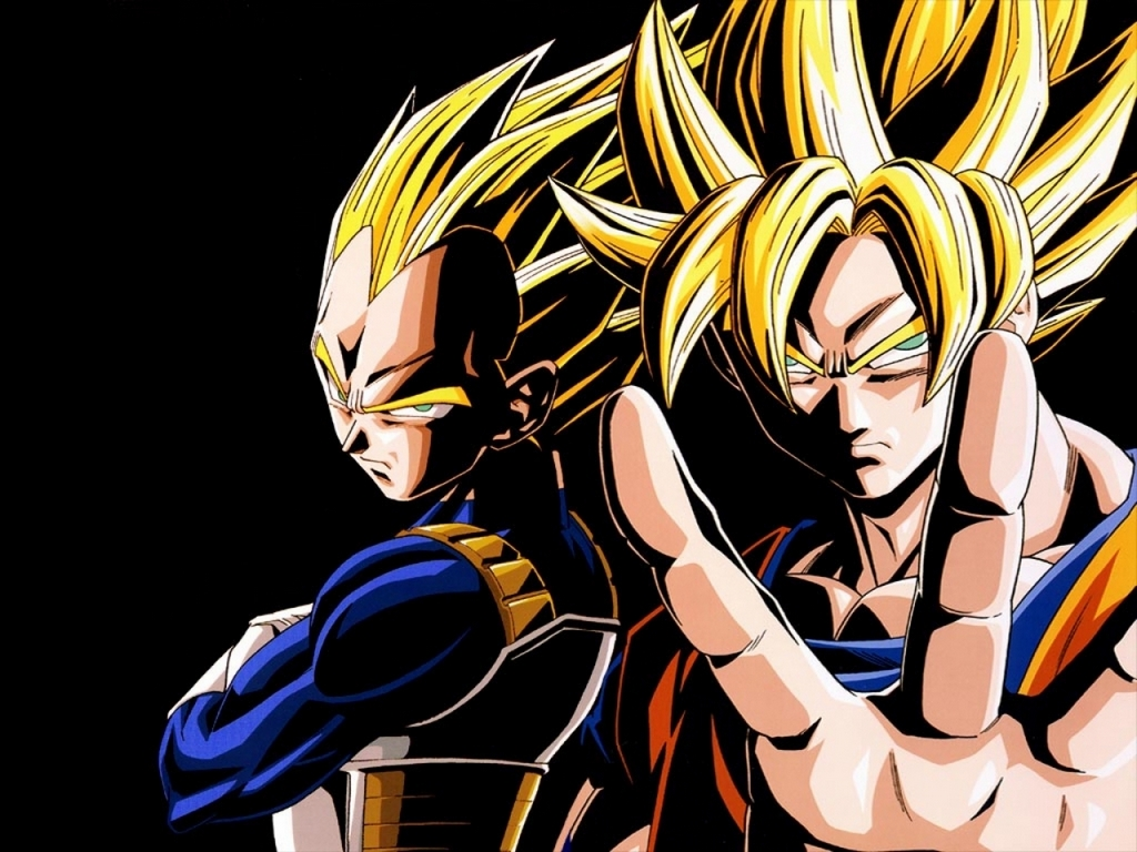 Dragon Ball Z images the best team goku and vegeta HD wallpaper and 1024x768