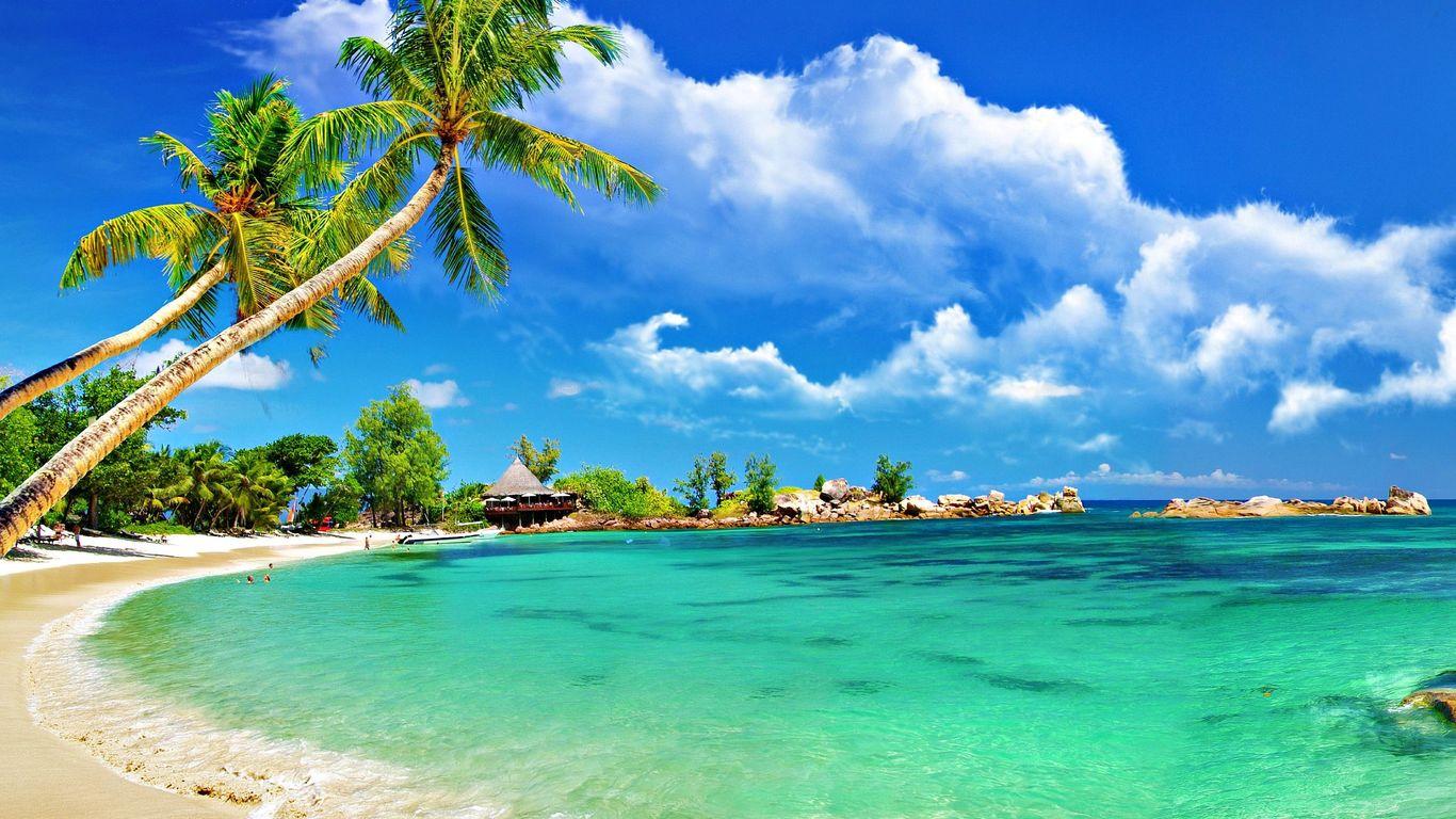 Sunny beach wallpaper 1366x768