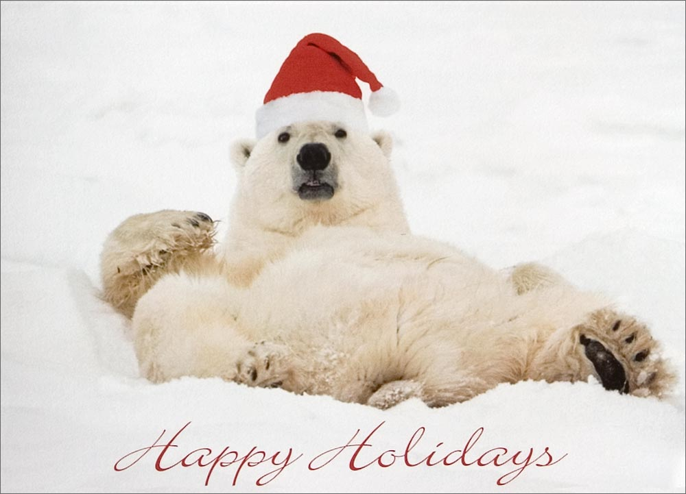 Christmas Polar Bear Wallpaper - WallpaperSafari