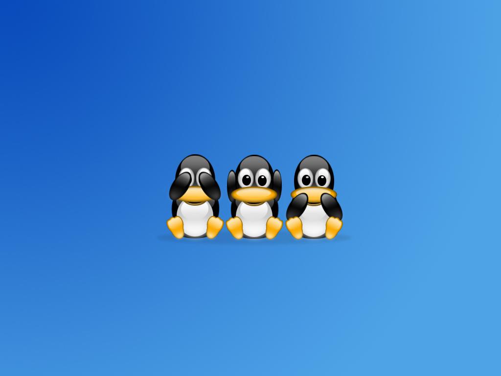 Linux Wallpaper 1   Windows Linux Photography Desktop Wallpapers 1024x768