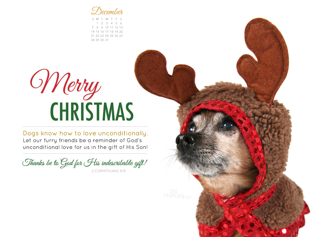how to get your dog in a calendar