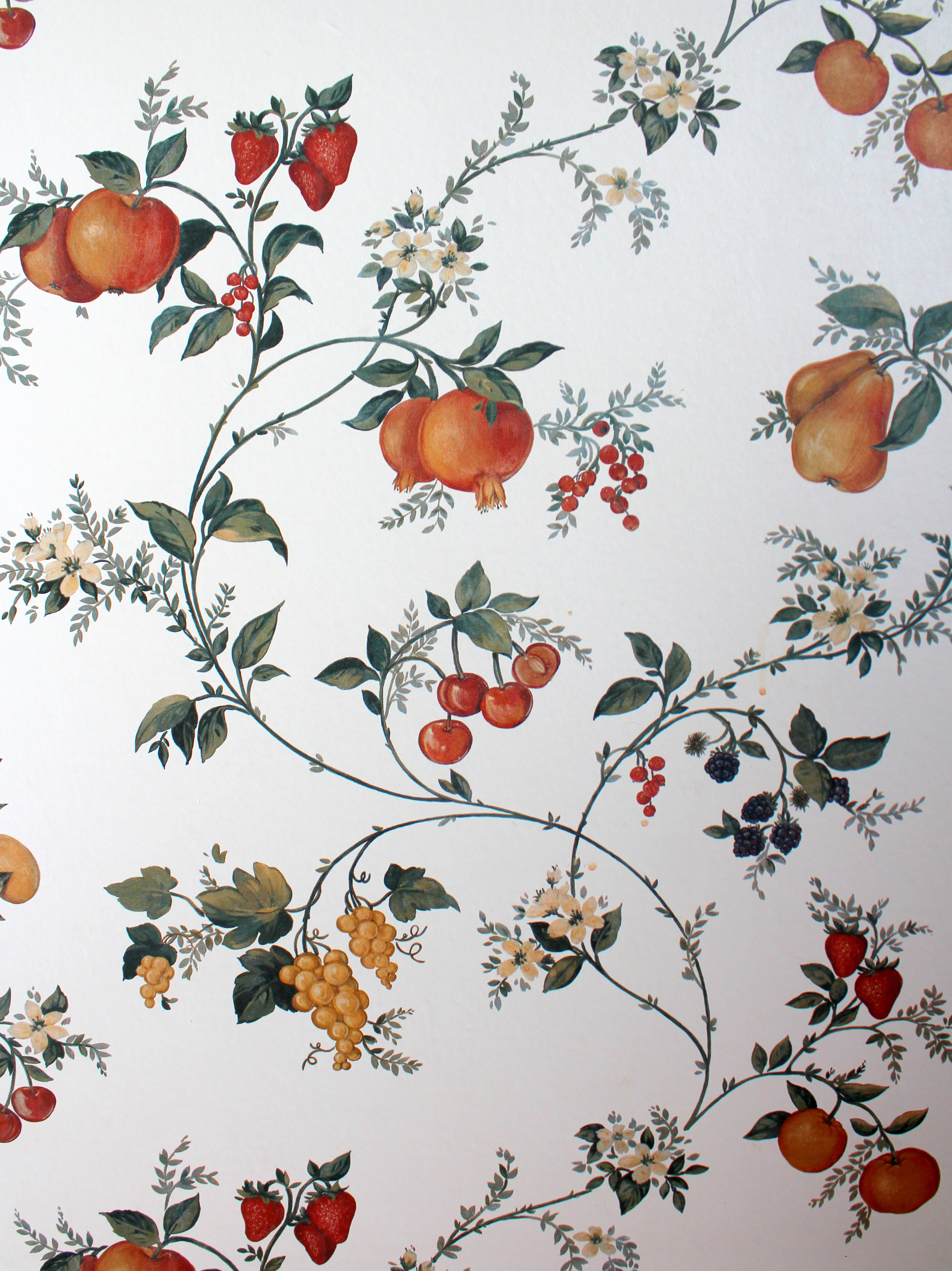 Go Back Images For Fruit Wallpaper For Kitchen 3262x4353