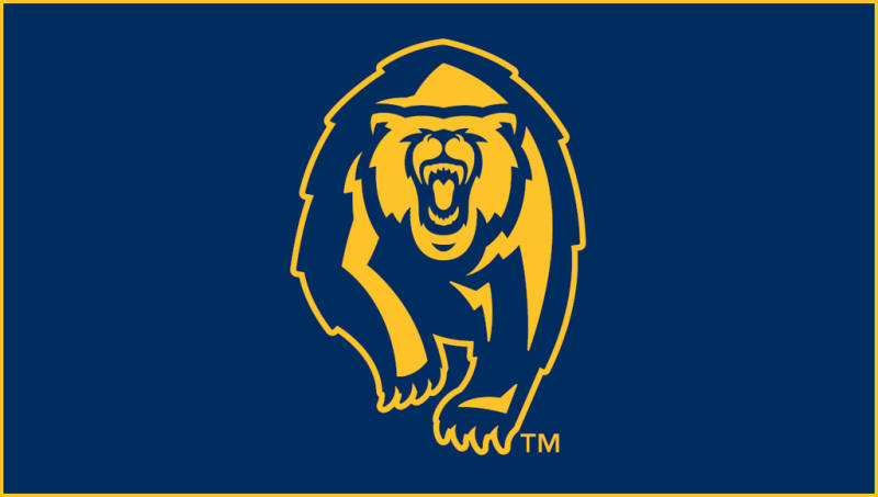 New Cal Berkeley Bear Logo 800x453