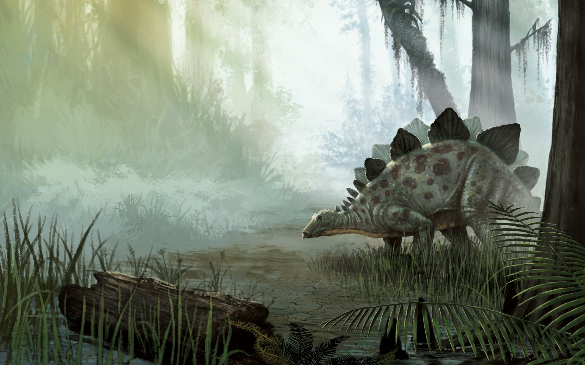 Dinosaur Wallpaper HD 1920x1200