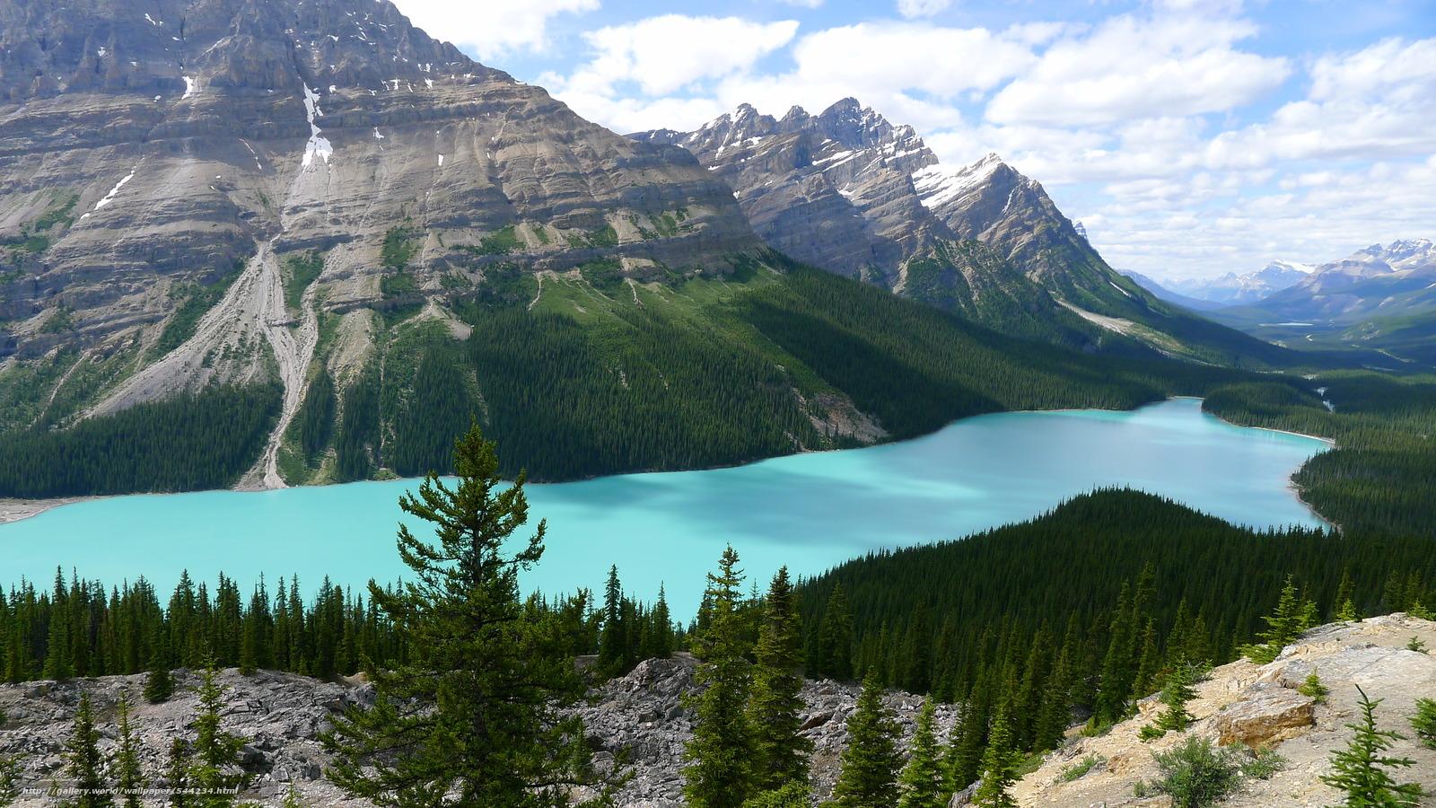 Download wallpaper Peyto Lake Alberta Canada desktop wallpaper 1600x900