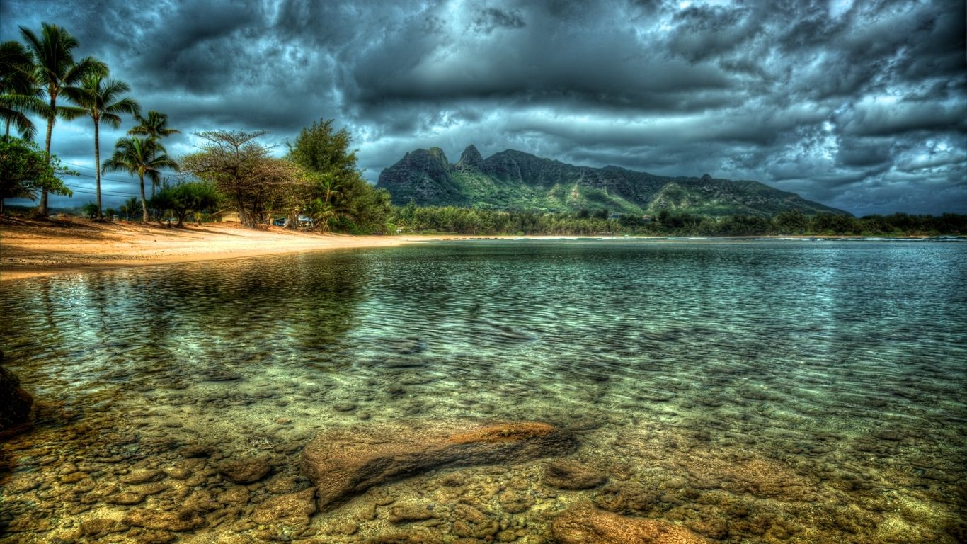 Higher resolution picture of Kauai beach hawaii island trees 1366x768