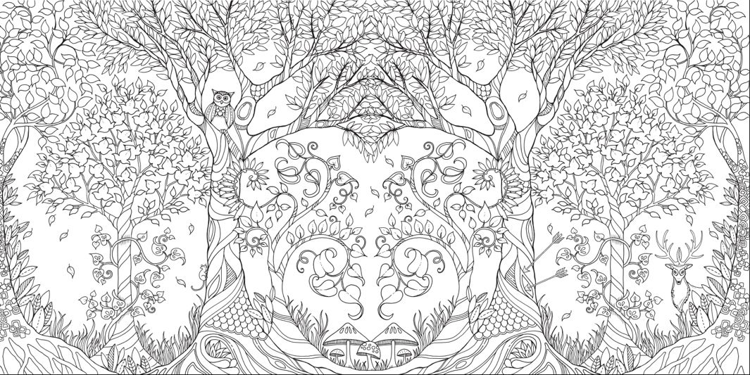 Johanna Basford Enchanted Forest courtesy the artist and Laurence King 1065x533