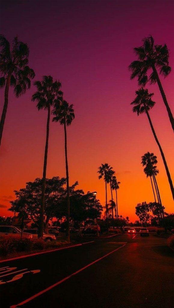 lmnar Facebook in 2020 Sunset iphone wallpaper Beautiful 579x1027