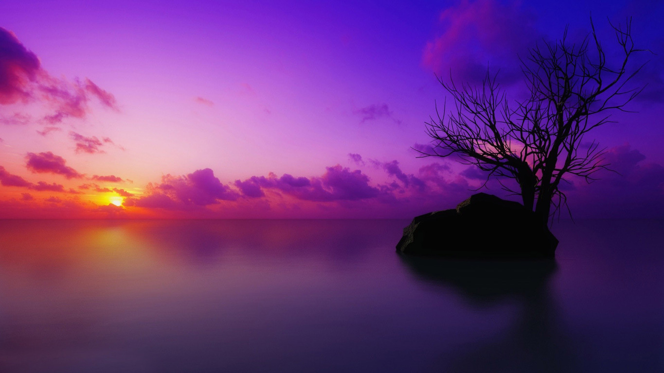 Purple sunset wallpaper 11792 1365x768