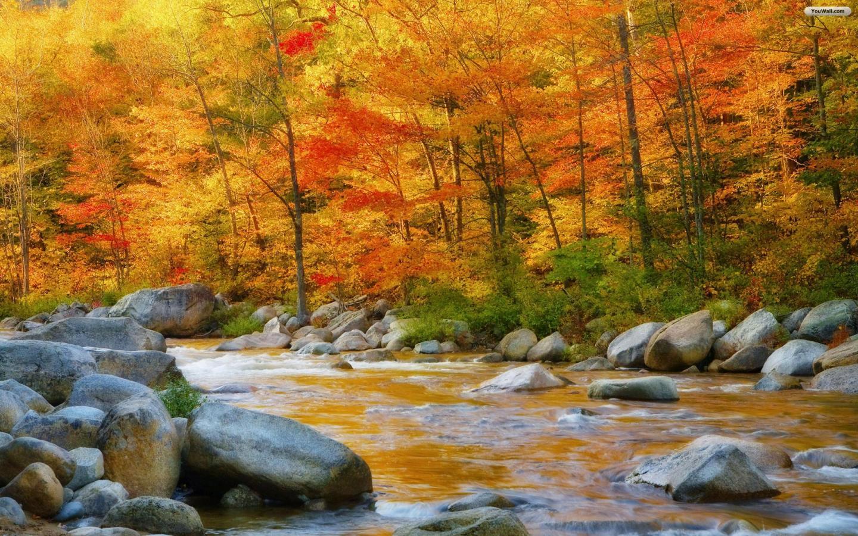 Autumn Wallpaper   wallpaperwallpapersfree wallpaperphotodesktop 1440x900