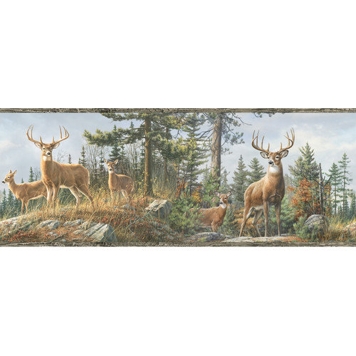 Fashions Outdoors Fern Whitetail Portrait Wildlife Wallpaper Border 500x500