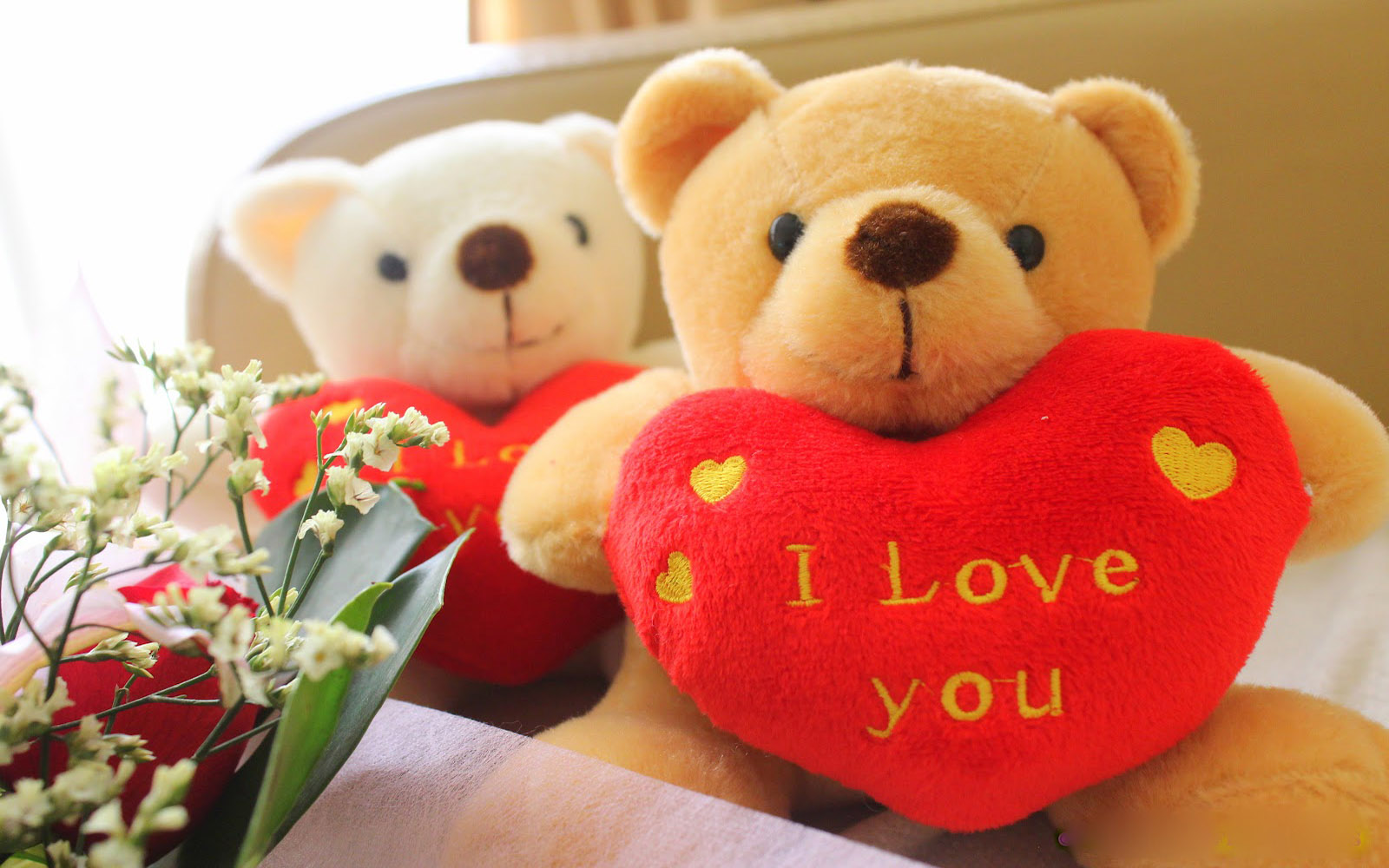 Download Amazing Cute Teddy Bear Love Wallpaper Full HD Wallpapers 1600x1000