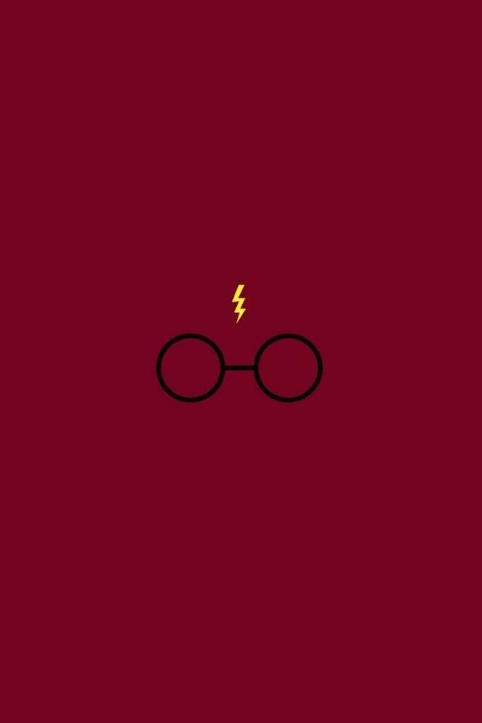 Harry Potter I 541x812