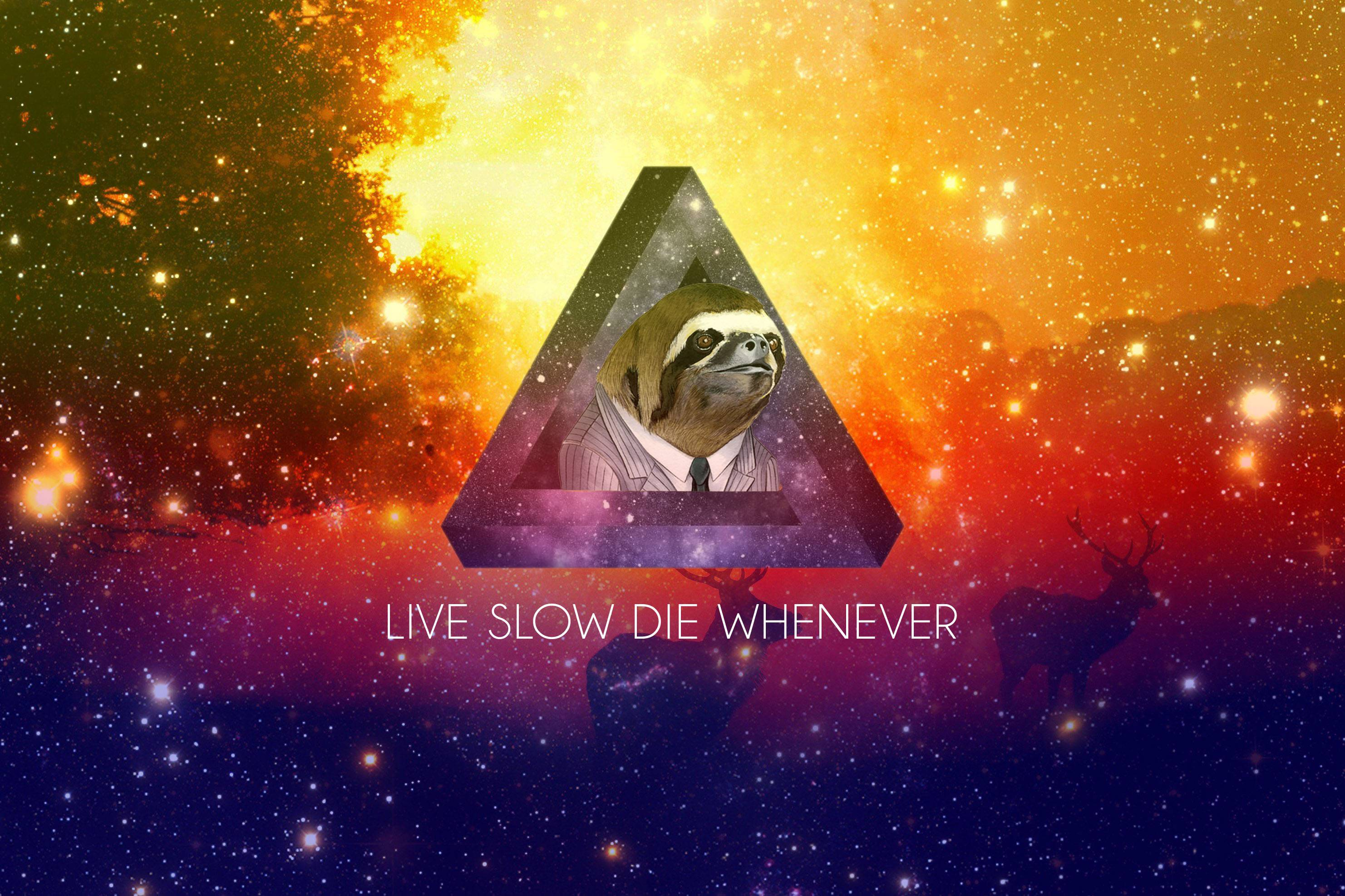Made a wallpaper out of Nap all day sloth wallpapers 2963x1974