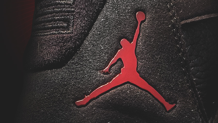 Jordans Shoe Vertical Image
