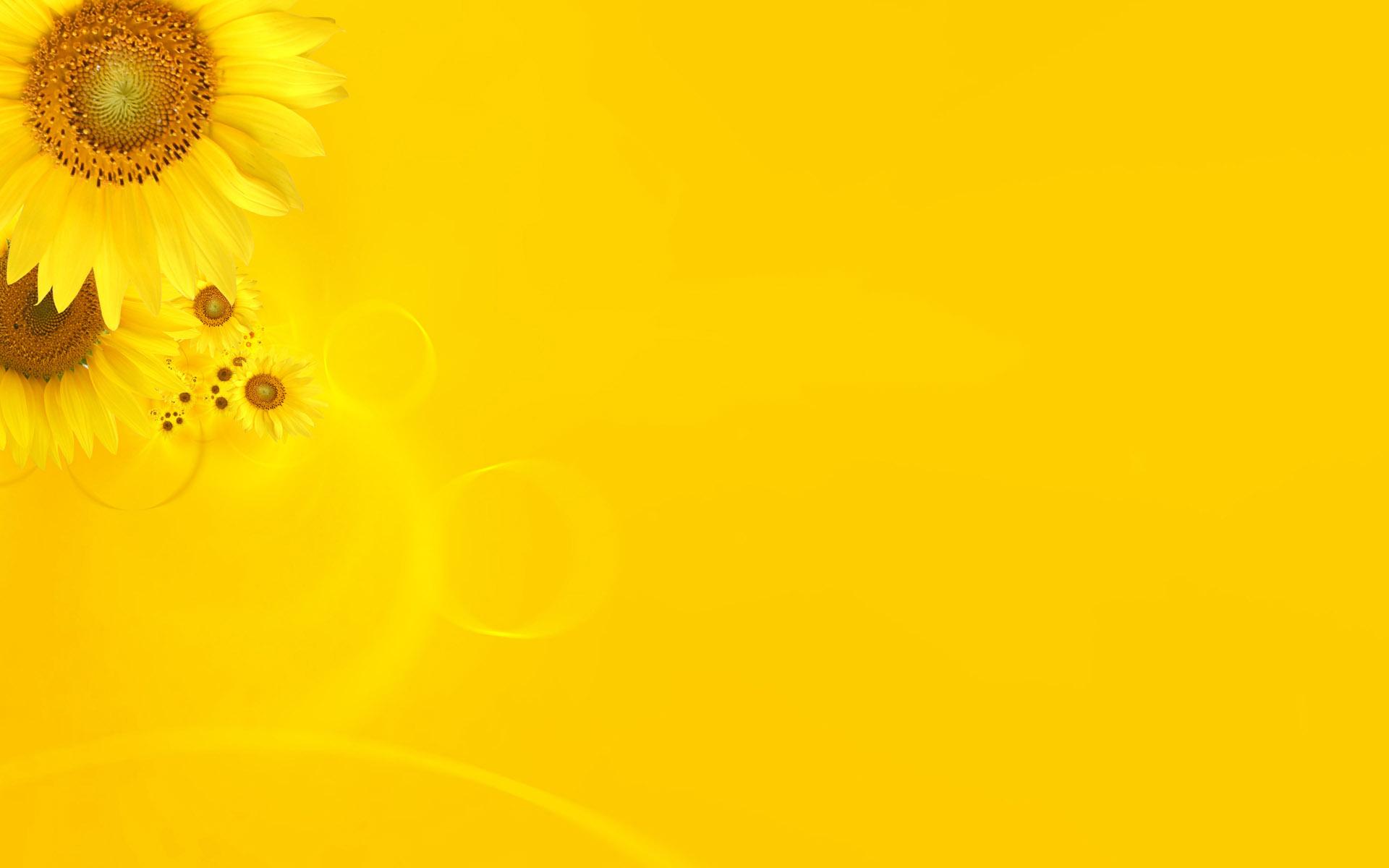 Yellow Wallpaper 1 1920x1200