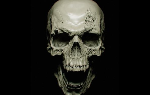Wallpaper skull vampire skull bones teeth wallpapers rendering 596x380