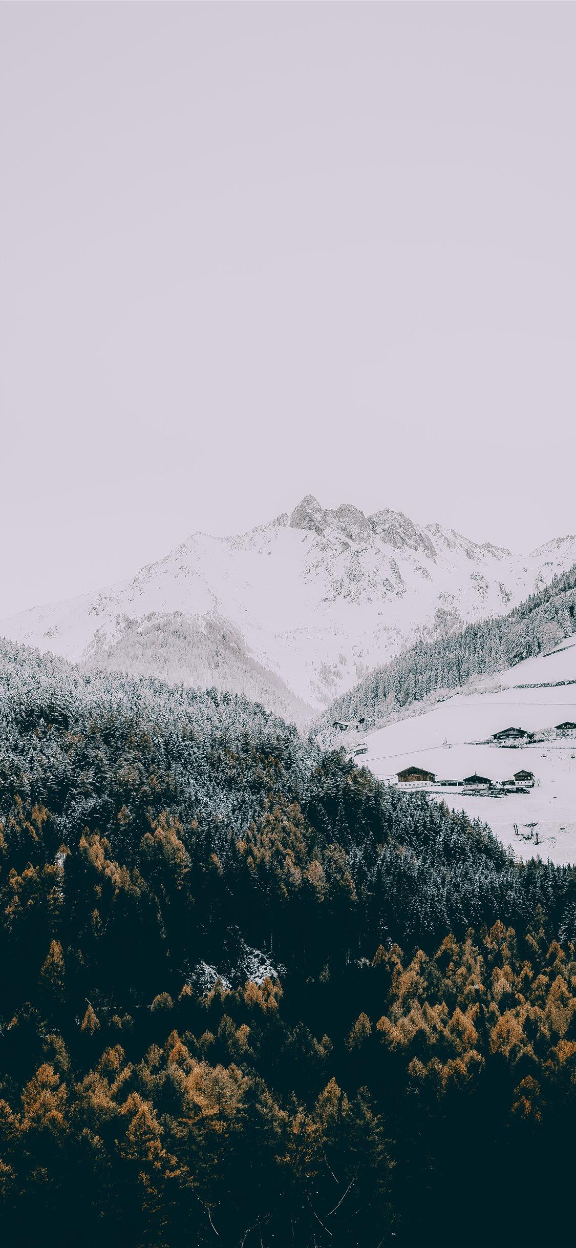 Winter iPhone 11 Wallpapers Download 1125x2436