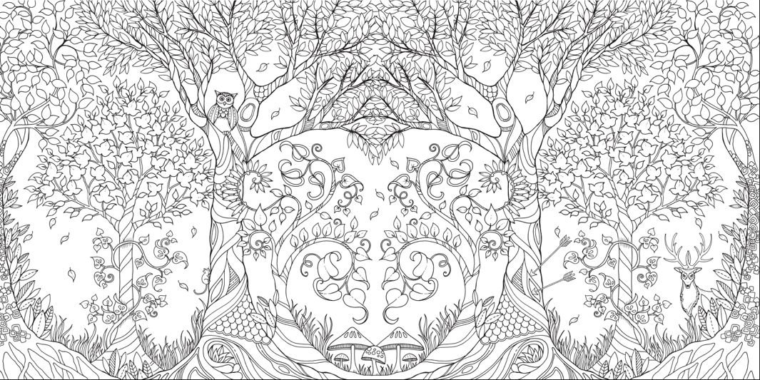 Here And Top A Page Spread From Johanna Basford S Adult Coloring Book 1065x533