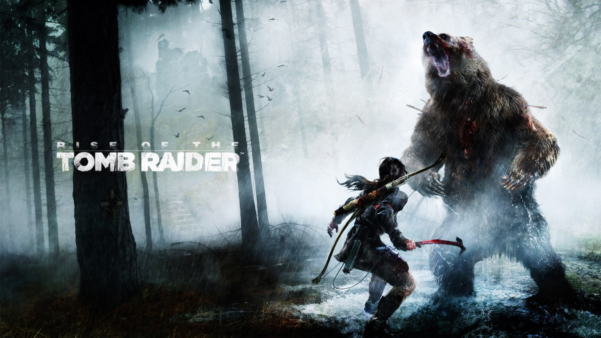 Rise of the Tomb Raider Wallpaper in 1920x1080 1920x1080