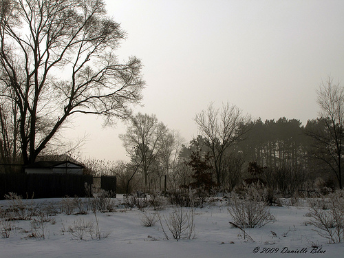 Early Winter Morning   1024x768 Desktop Wallpaper   1024 x 500x375